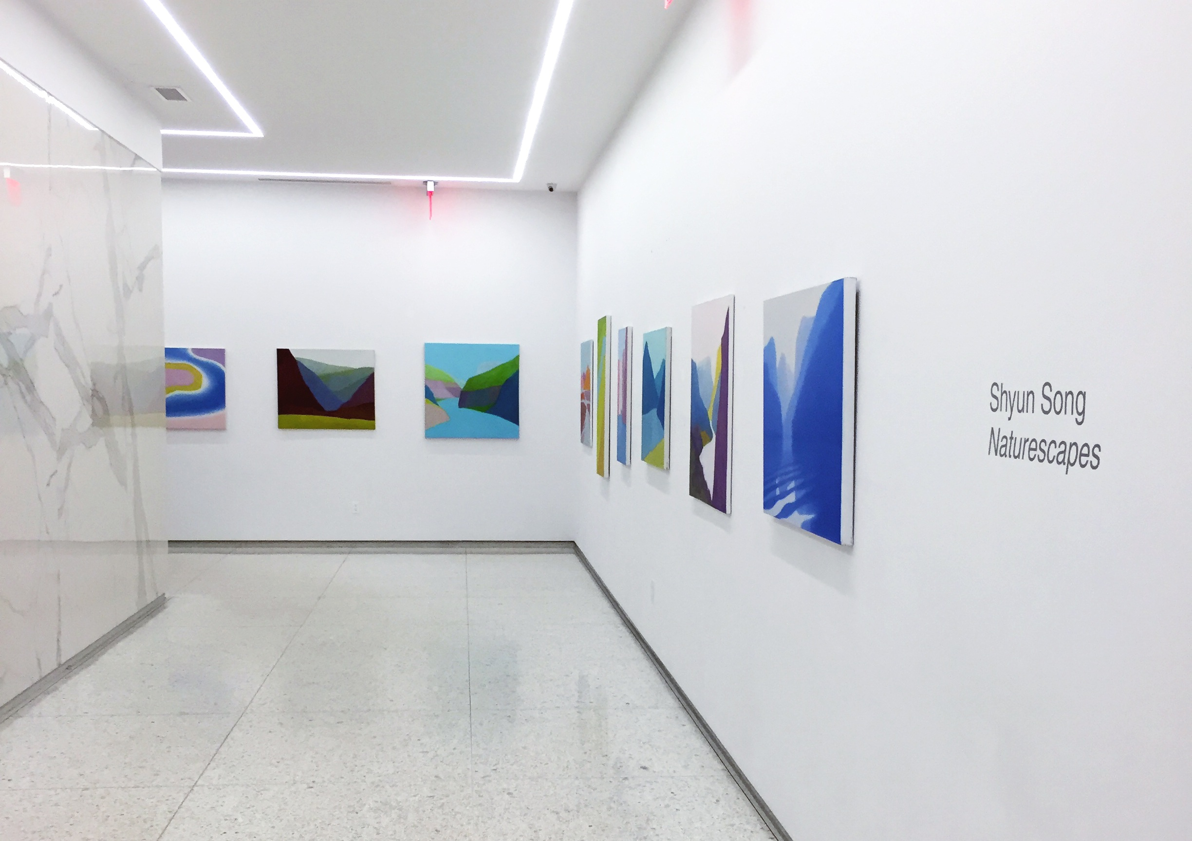 Installation View:  Shyun Song: Naturescapes
