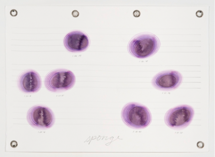 Score for Two Dinosaurs_ Sponge, 2014, watercolor and graphite on paper with metal grommets, 22 x 30 inches .png
