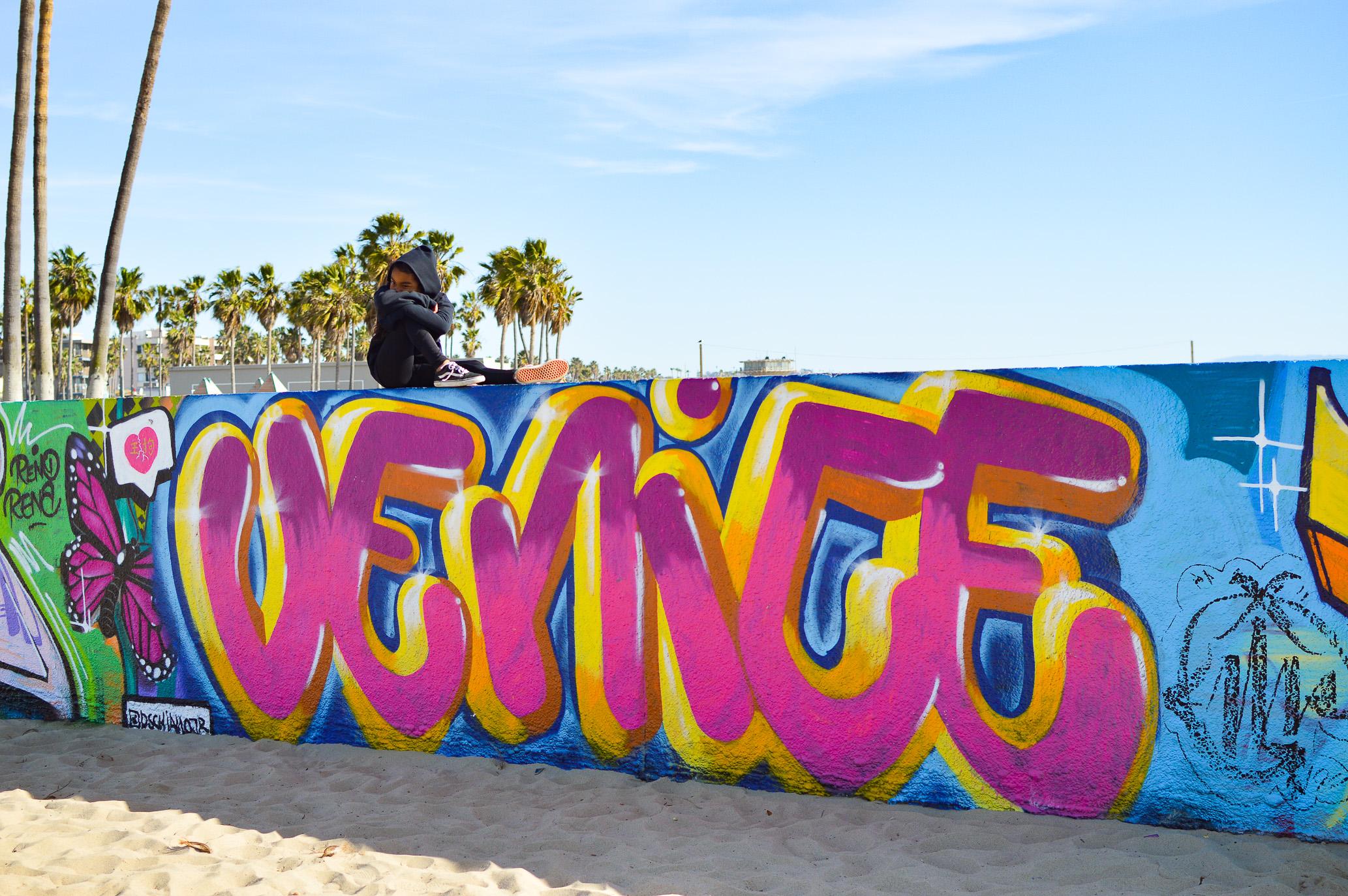Day Trip Venice Beach-15.jpg