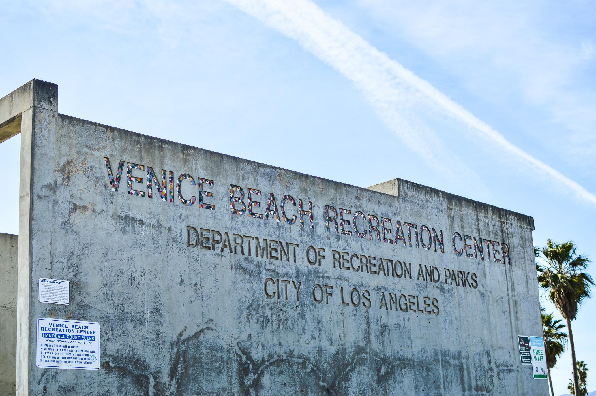 Day Trip Venice Beach-10.jpg