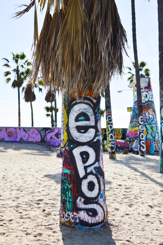 Day Trip Venice Beach-13.jpg