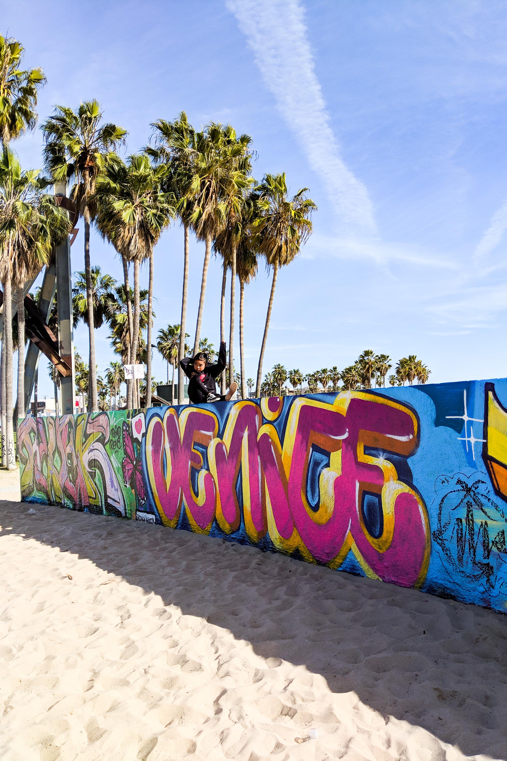Day Trip Venice Beach-2.jpg