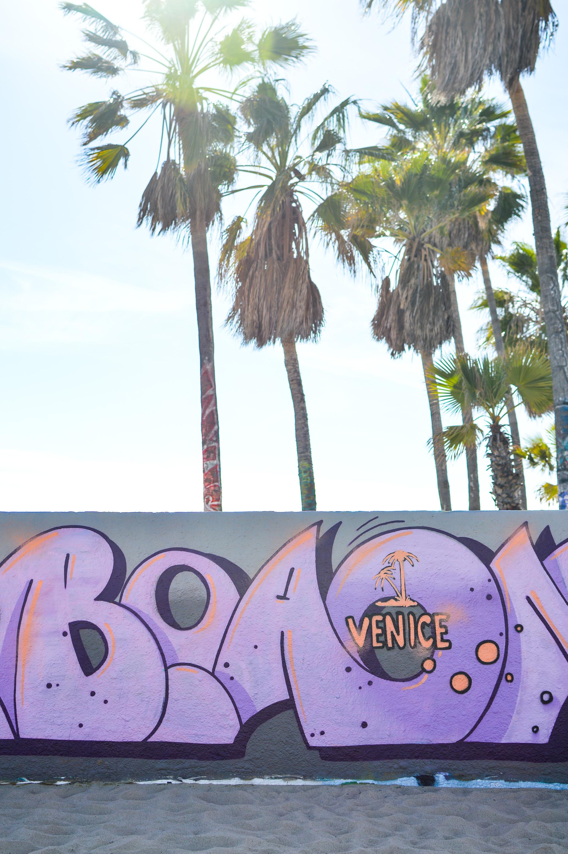 Day Trip Venice Beach-14.jpg