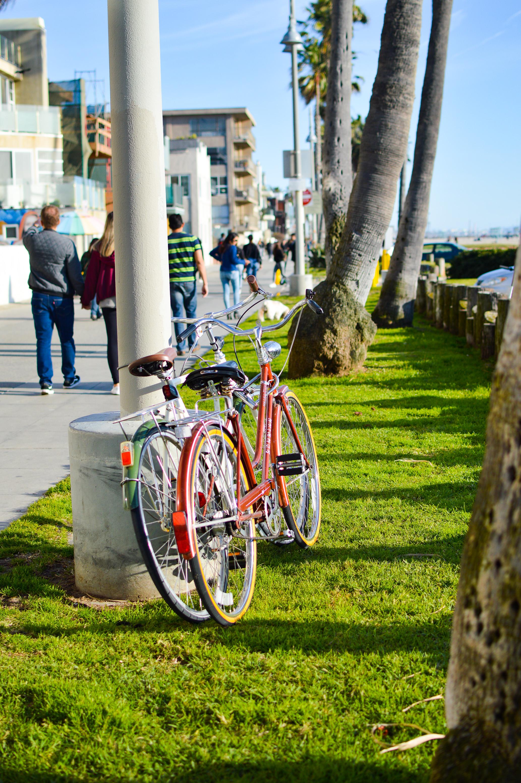 Day Trip Venice Beach-42.jpg