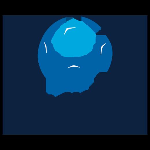 NPL 520x520 dec 2017 PS4 Logo.png