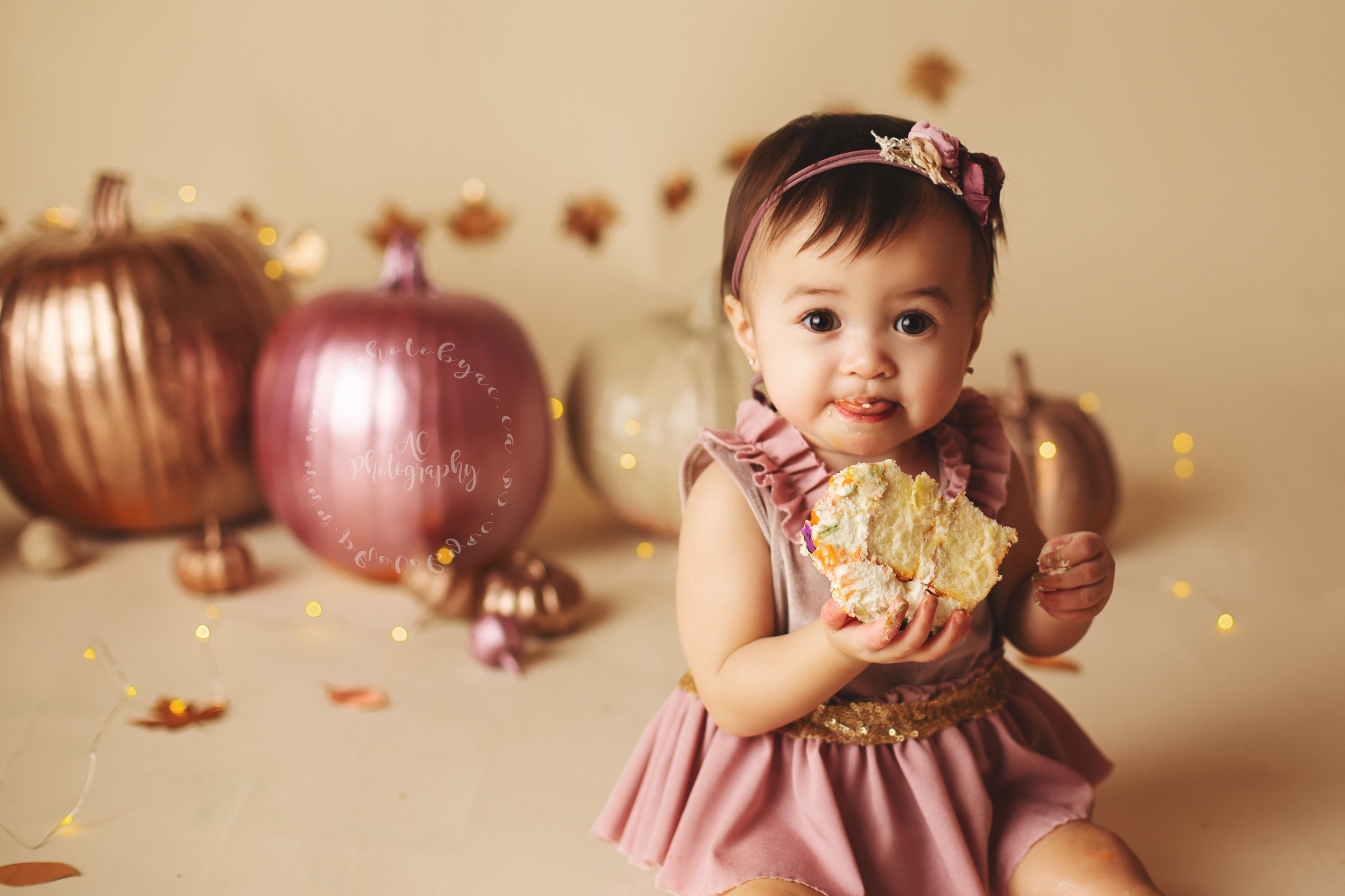 Sophie's pumpkin themed set !! View more  here.