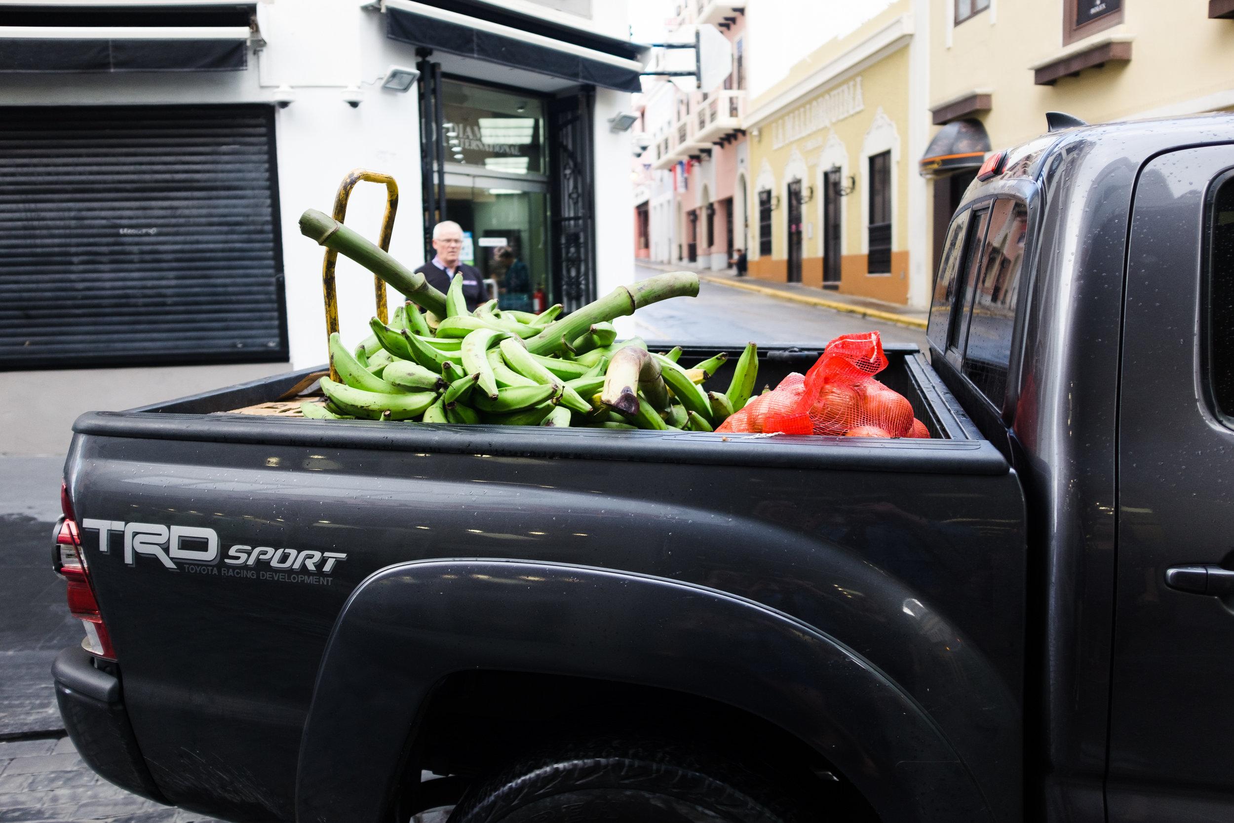 puertorico_february_azureewiitala-224.jpg