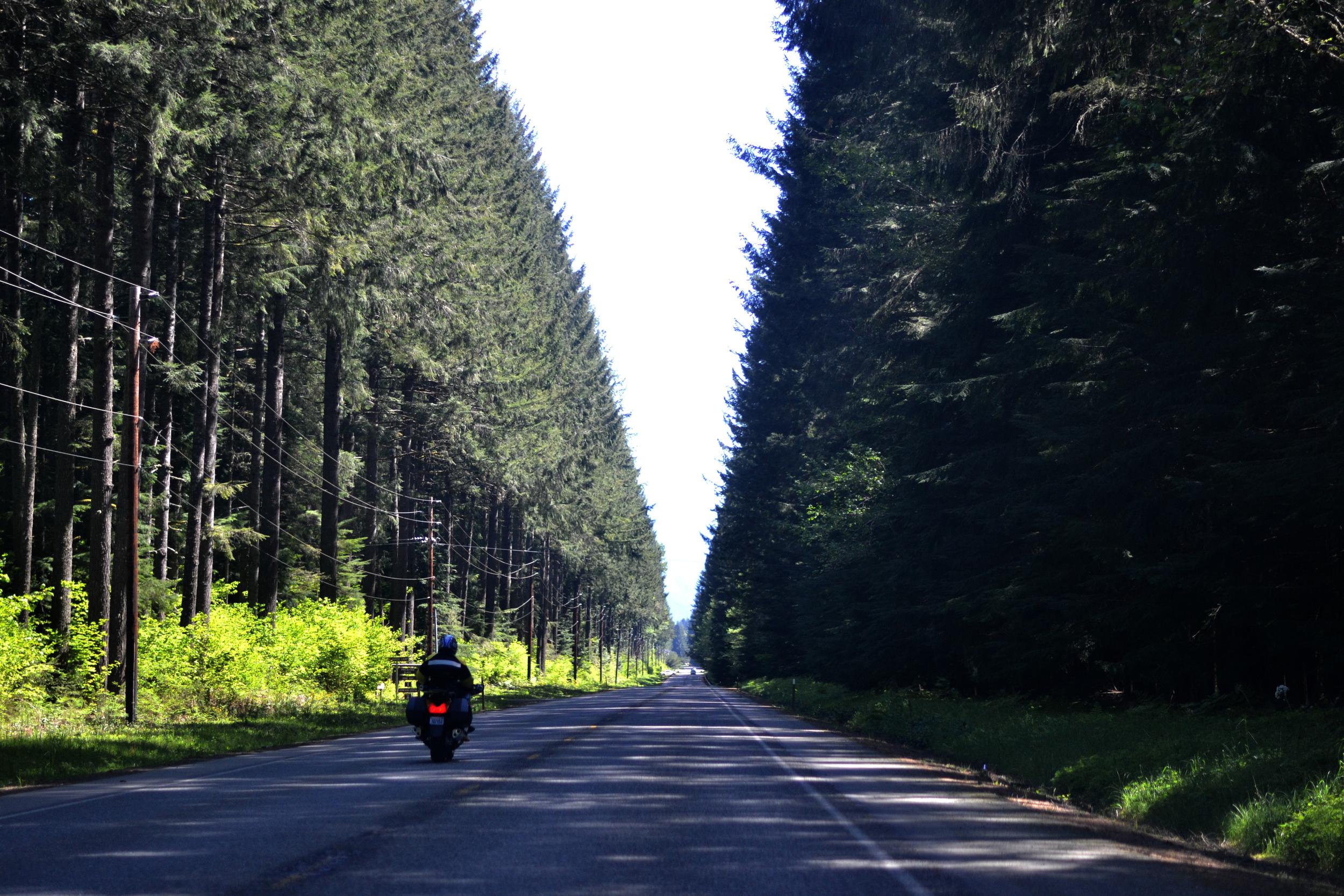 Roadtrippin' to Mount Rainier