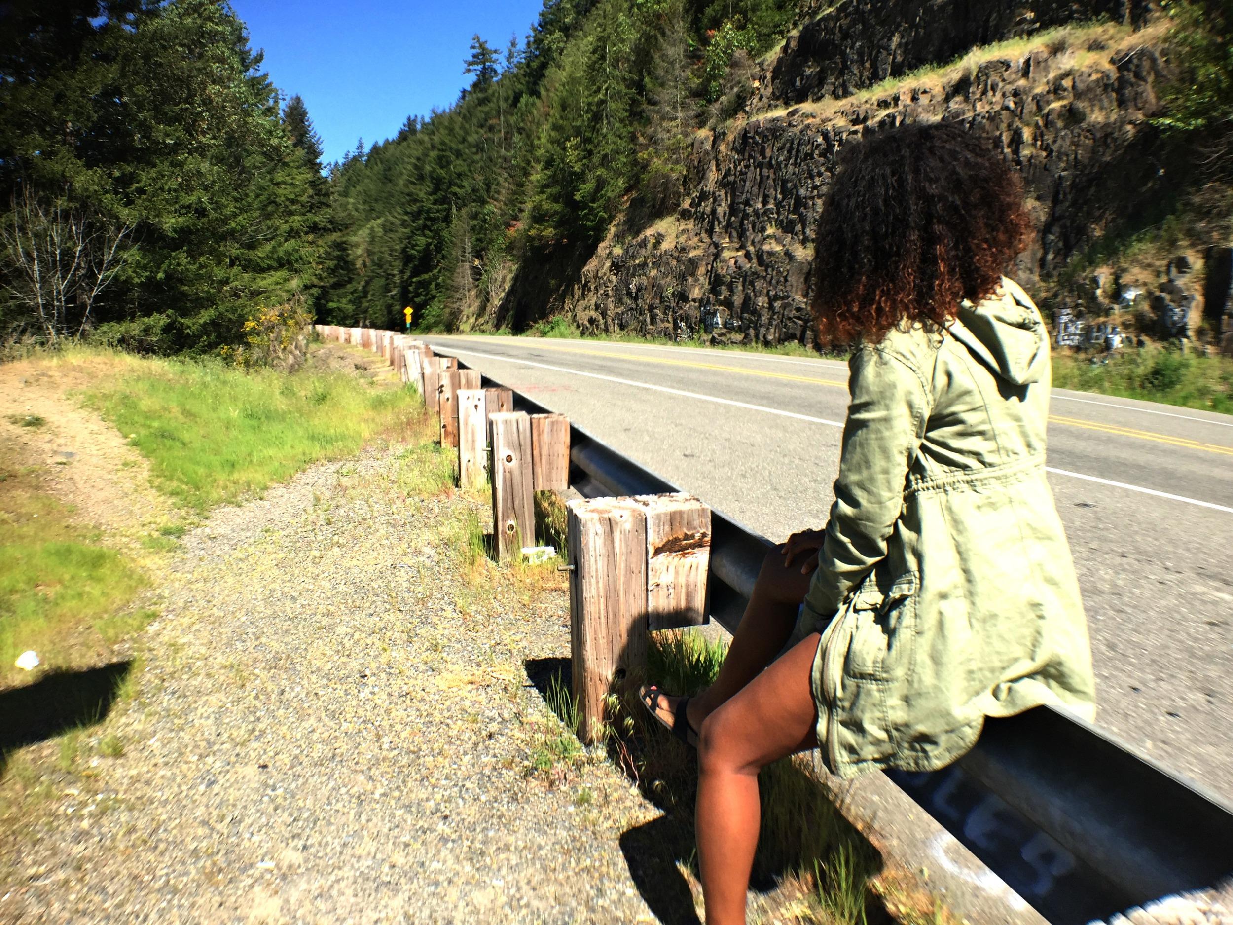Random photo stops on the way to Mount Rainier.