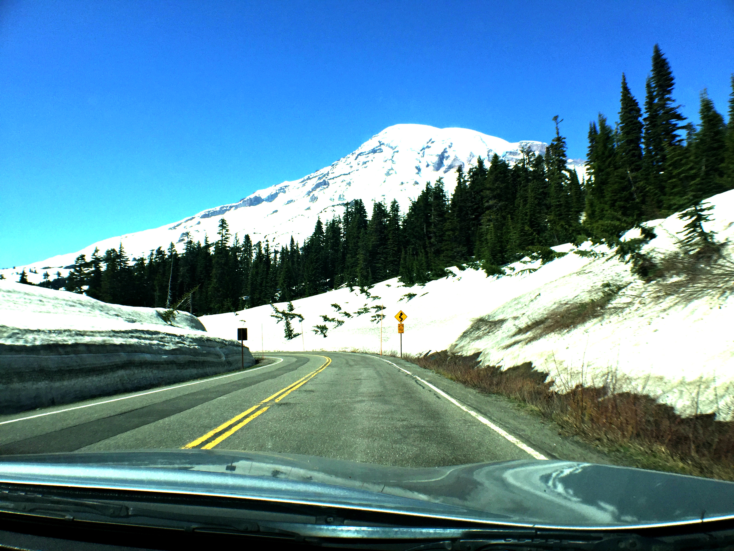 Nearing the top of Mount Rainier. Despite all the snow, it wasn't cold at all and I actually had on shorts. So crazy!