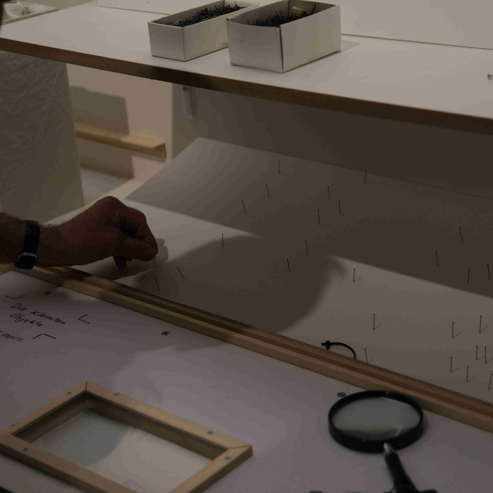 Abgesammelt - Am Wochenende vom 24.-25.03. wird TaxoMania nur noch als leerer Kasten zu sehen sein. Nun ja, ganz leer nicht. Die Objekte sind aus den Vitrinen verschwunden, die Vitrinen selbst auch. Jetzt stehen dort Leitern und Müllsäcke. Flatterband hängt vor dem Eingang. Die