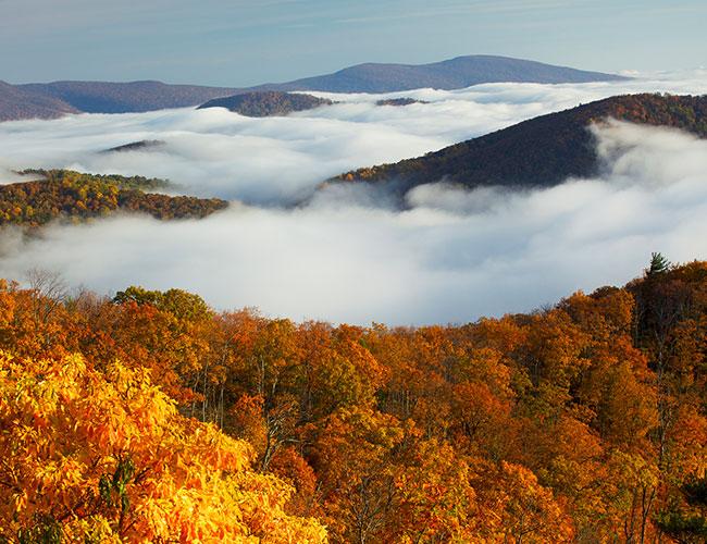 Shenandoah National Park - Luray,VA