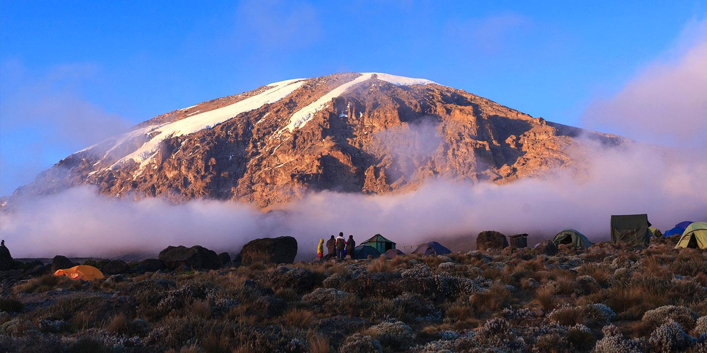 Mt. Kilimanjaro -