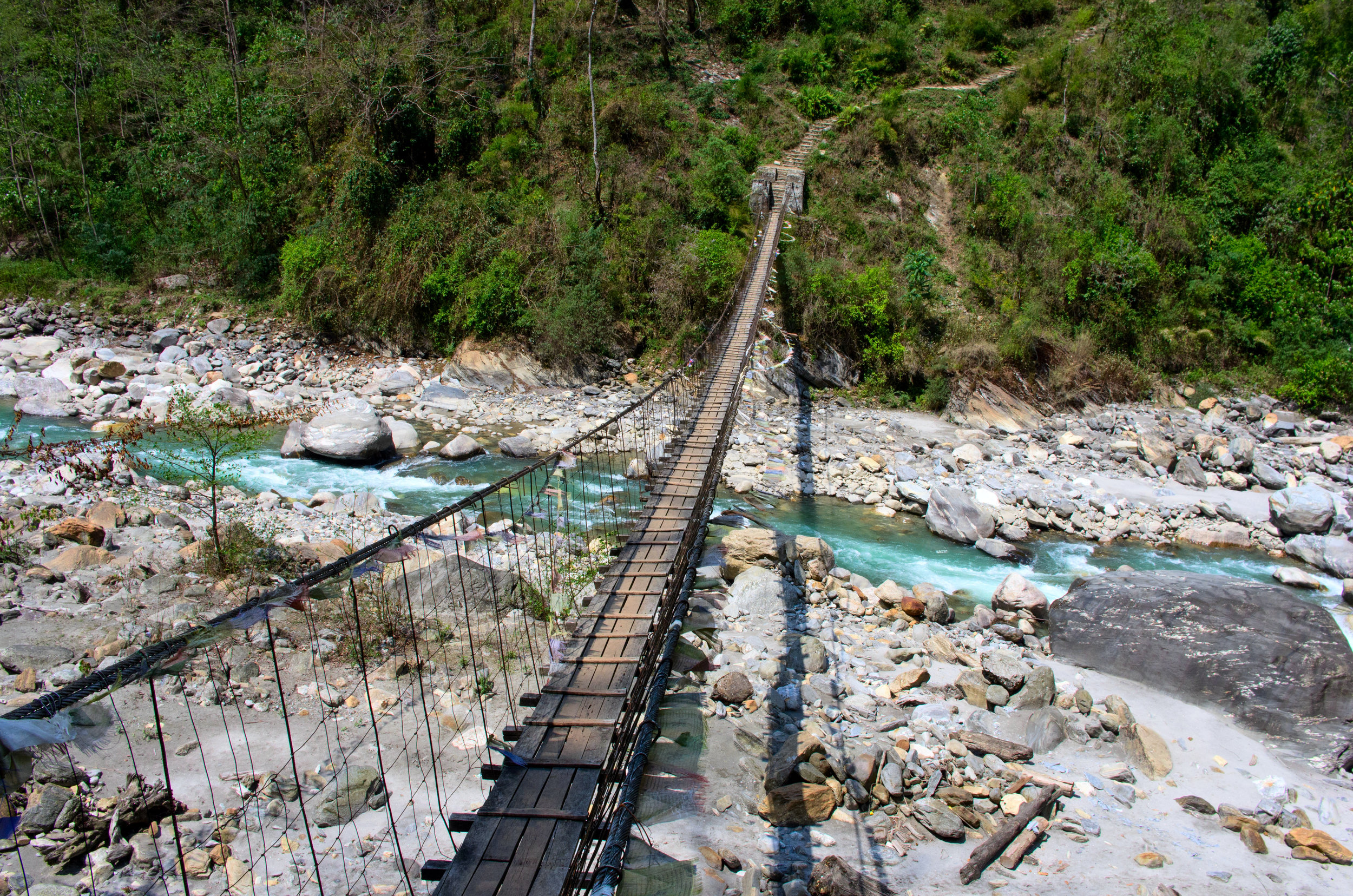 Chitwan National Park - For everyone headed to Everest Base Camp