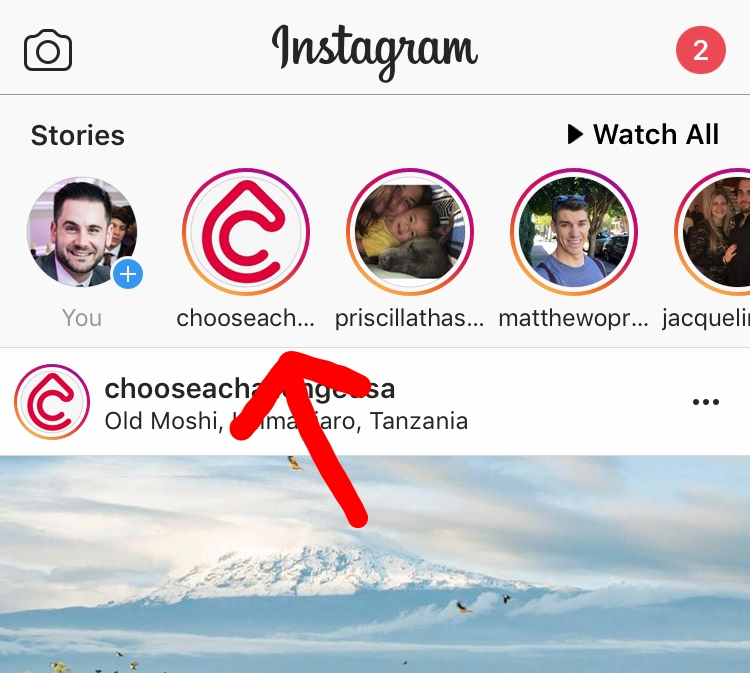 Get updates right at the top of your Instagram homepage when they're posted
