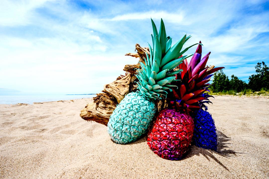 painted pineapples-latinitium.com-learn-latin.jpeg