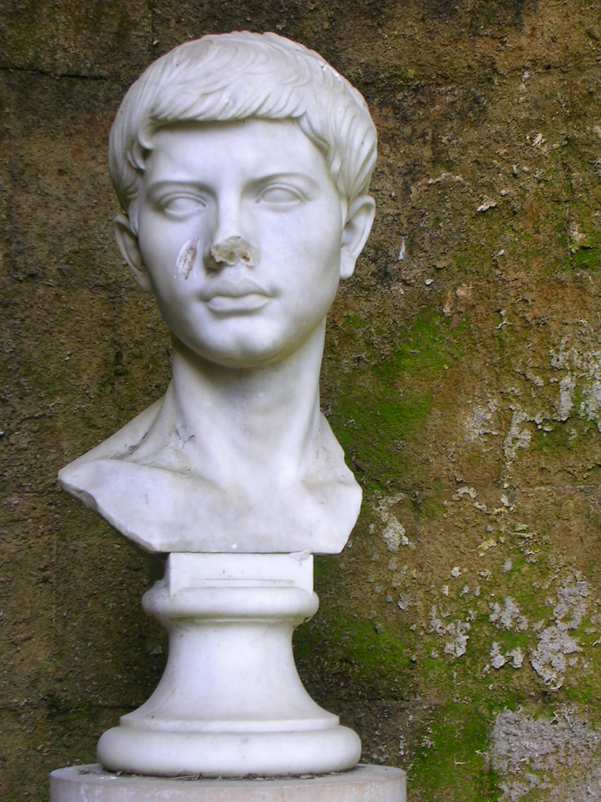 Bust of Publius Vergilius Maro,  from the Tomb of Virgil in Naples - photo A Hunter Wright.
