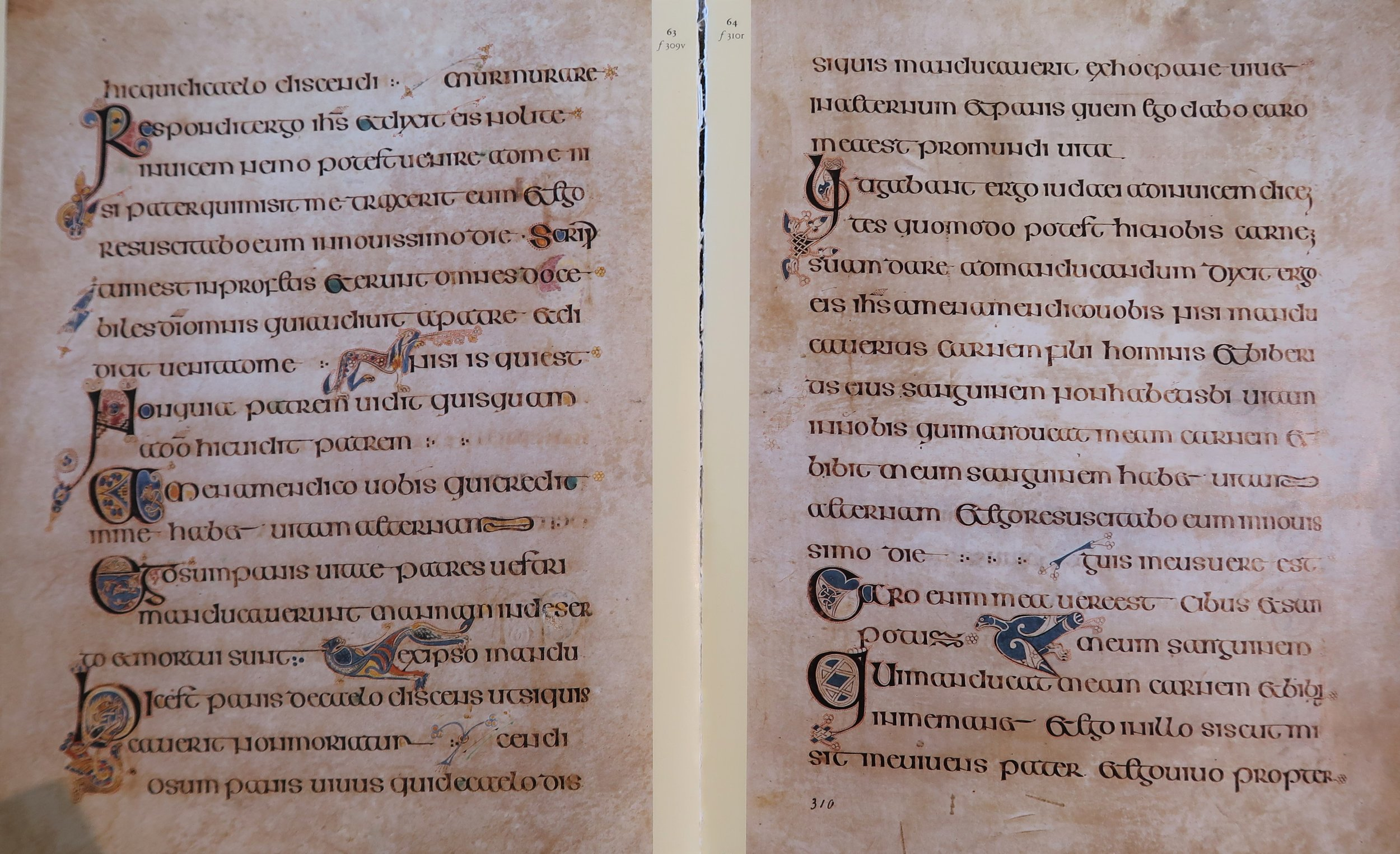 Book of Kells, replica 2, Latinitium.com.jpg