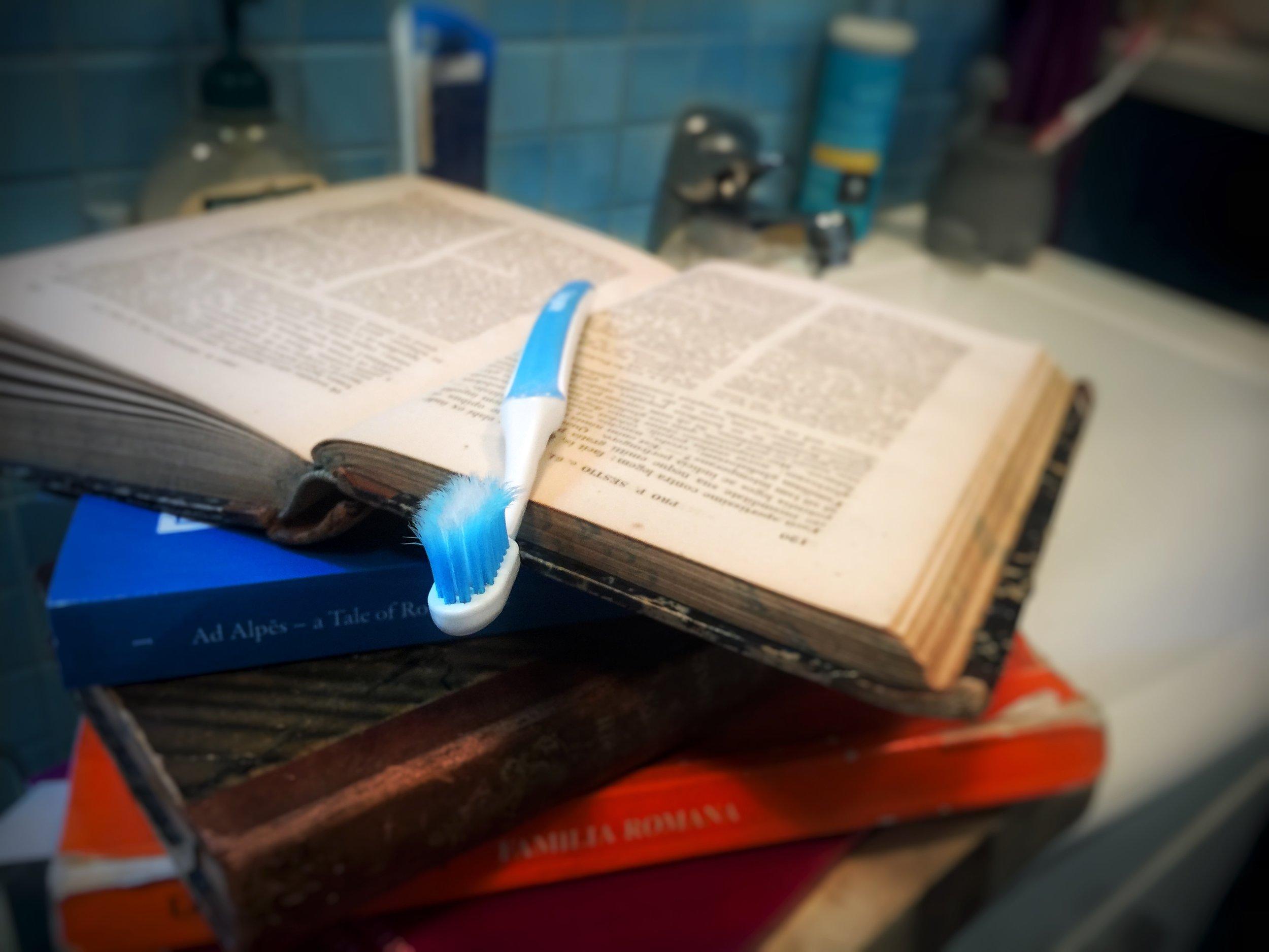 Latin habits, how to learn latin, latinitium.com photo Amelie Rosengren.JPG