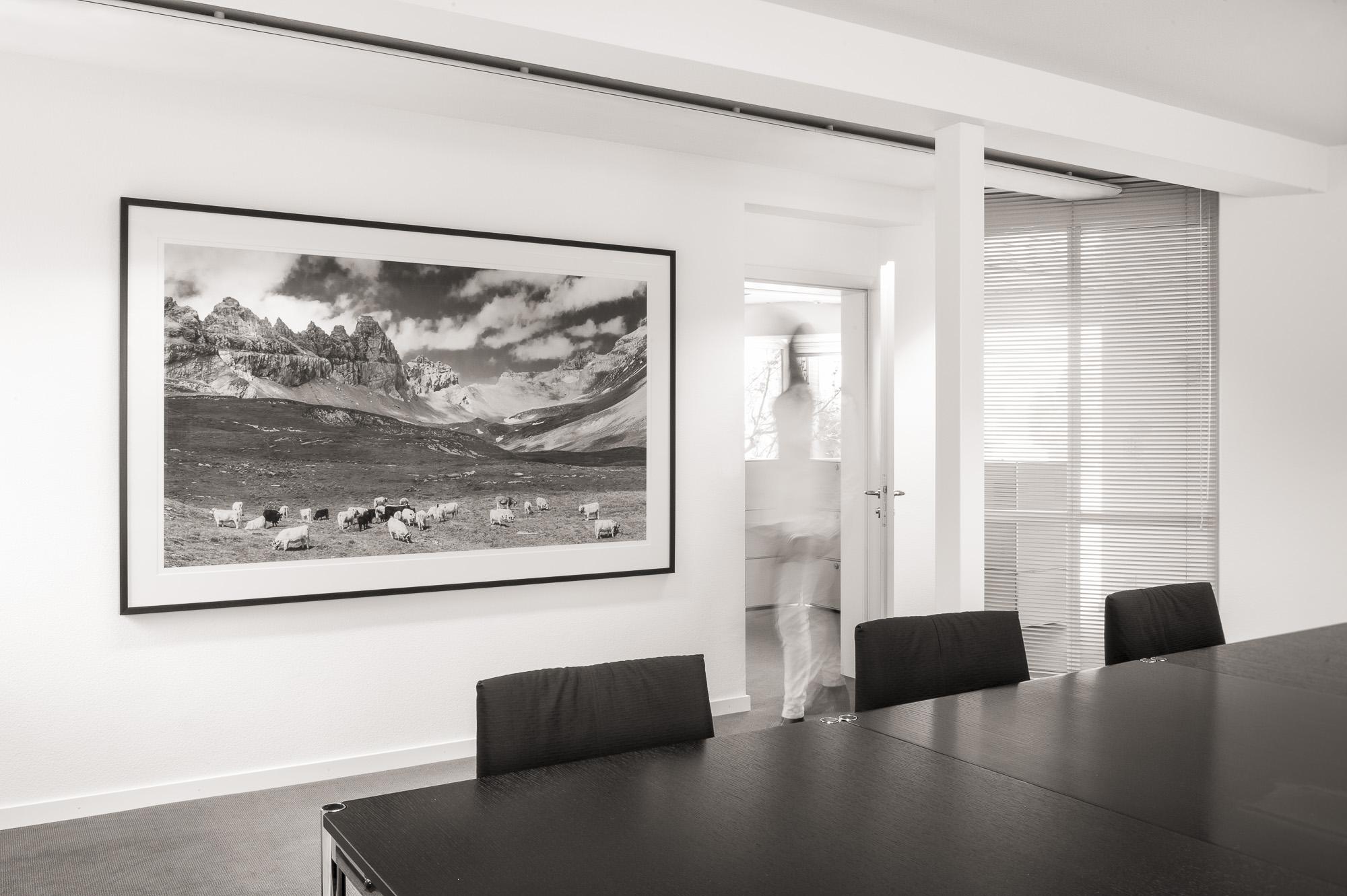 Herde vor Tschingelhörner  3/10 fine art print Hahnemühle 192cm x 111cm Rahmen Wenge 215cm x 132cm