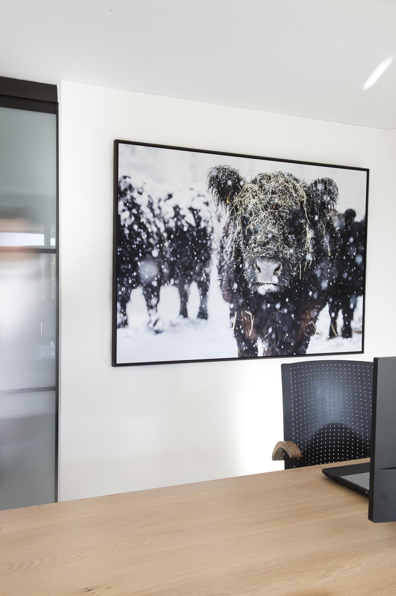 Leila 3/10, fine art print 120cm x 180cm , Schattenfugenrahmen wenge