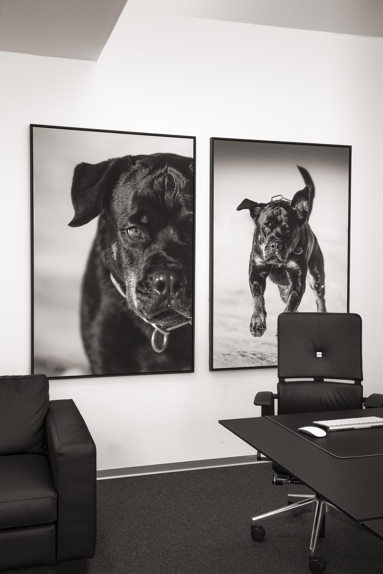 """Projekt """" Gordon & Blake"""" 1/1 fine art print Hahnemühlepapier 100cm x150cm Schattenfugenrahmen schwarz"""