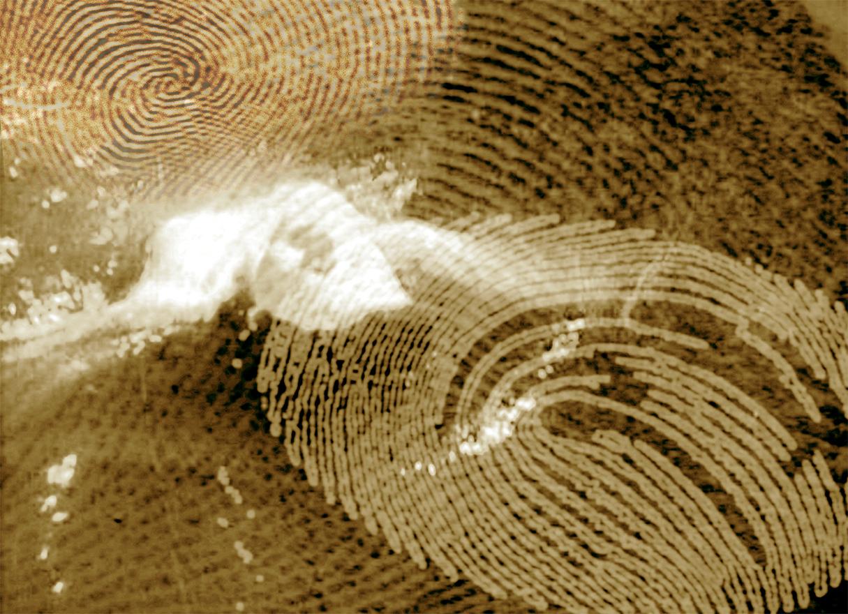 rahel_mueller_fingerprints2010_(02).JPG