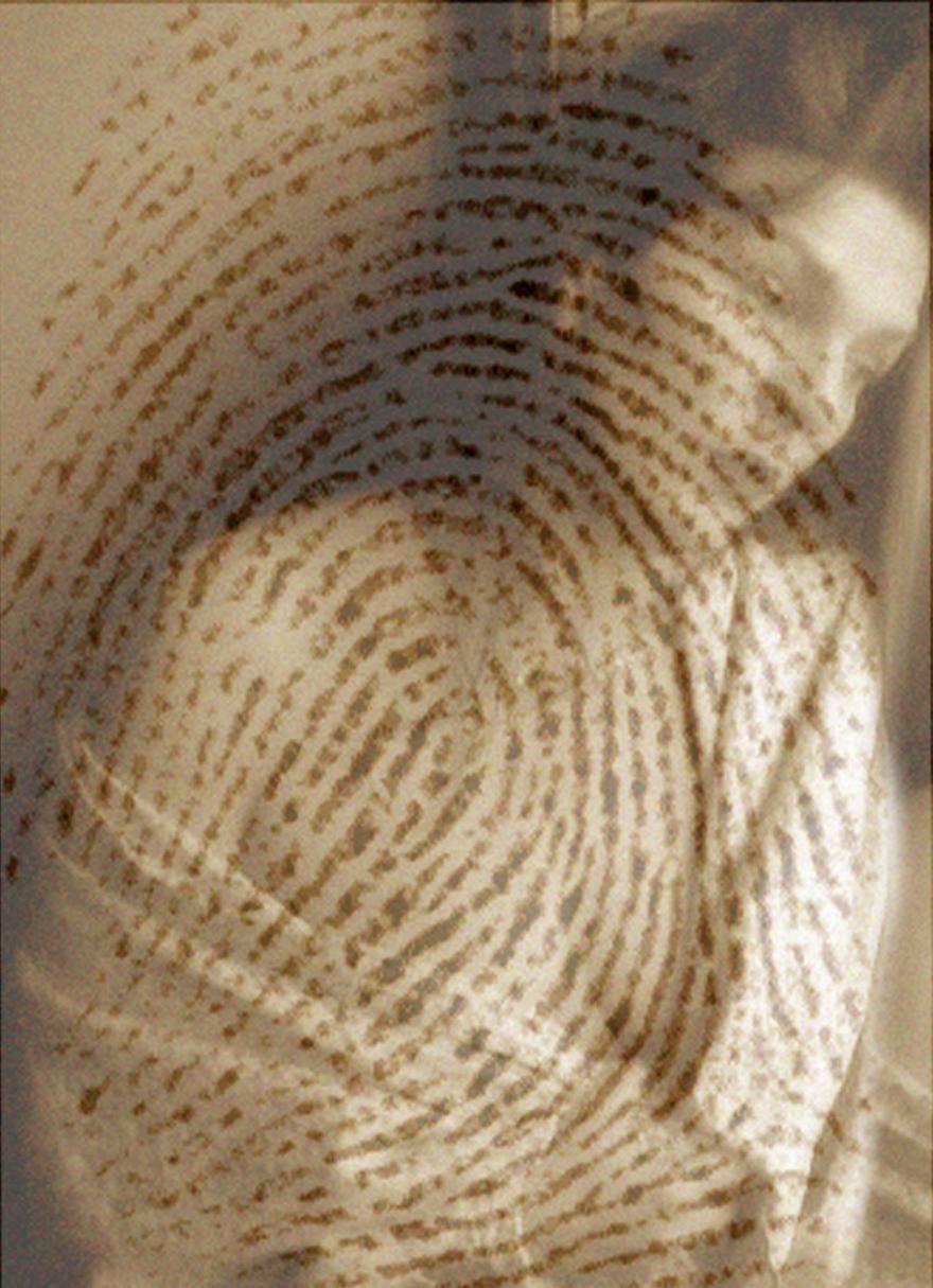 rahel_mueller_fingerprints2010_(05).JPG