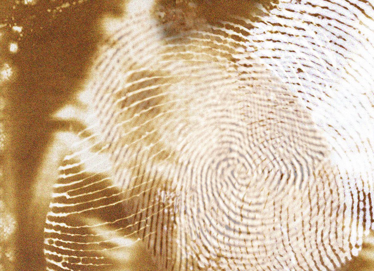 rahel_mueller_fingerprints2010_(07).JPG