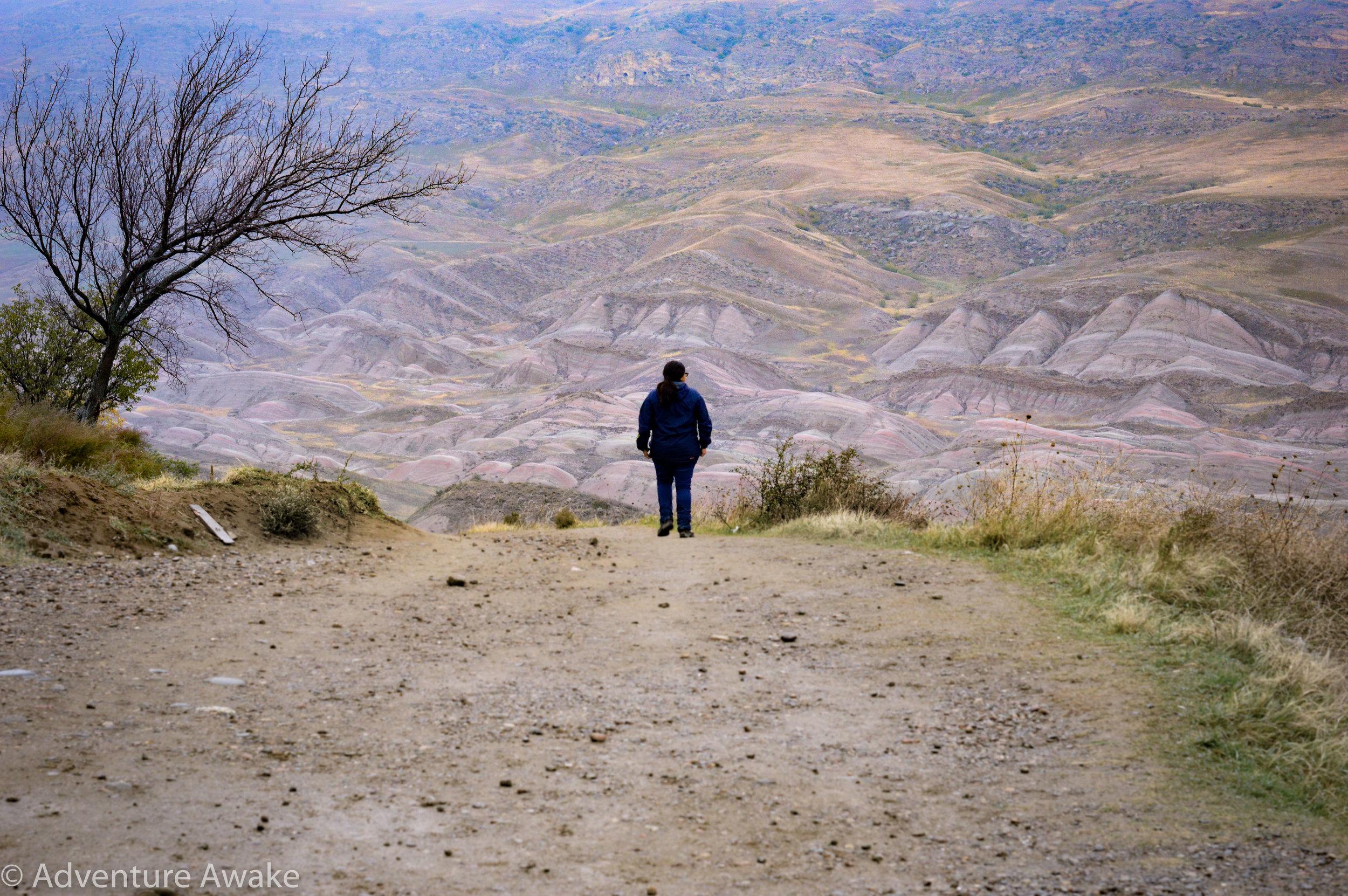Davit Gareja - Adventure Awake