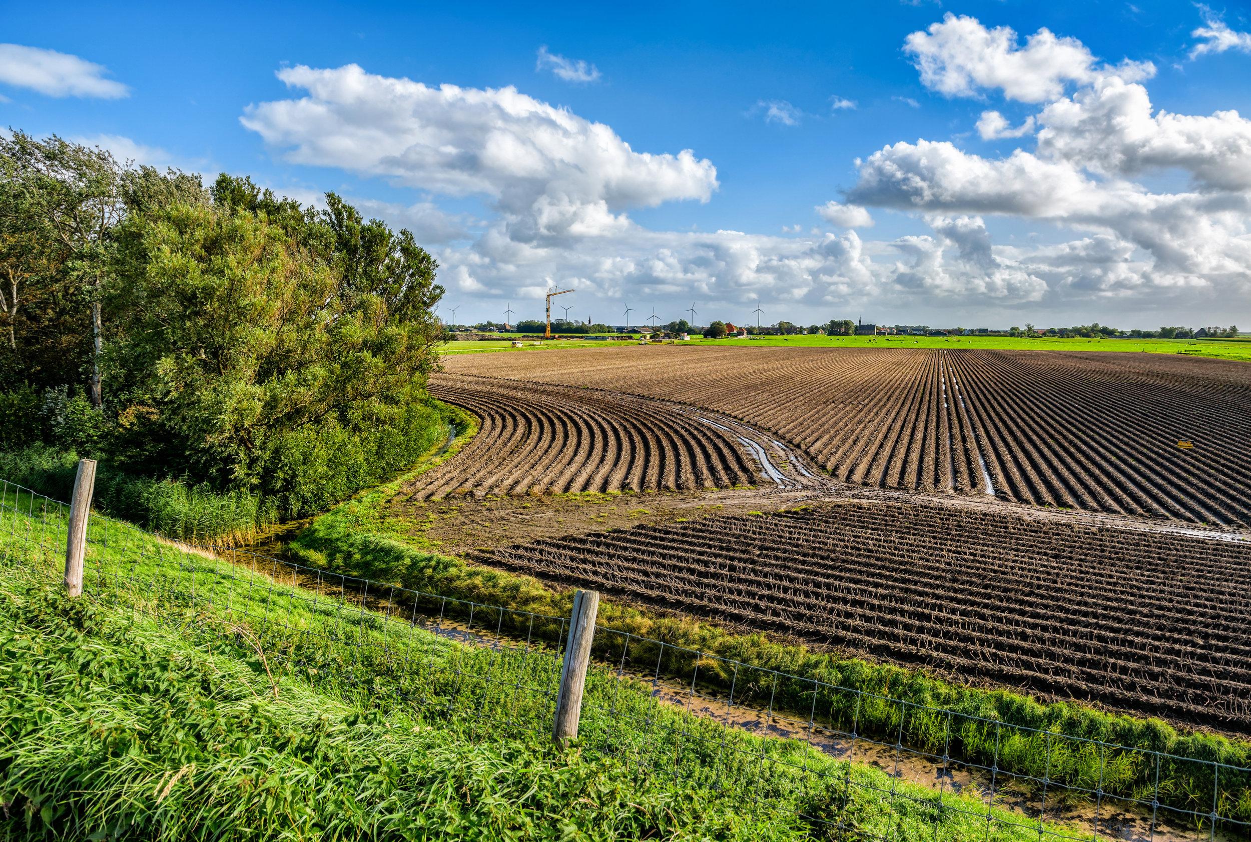 Plowed Field.jpg