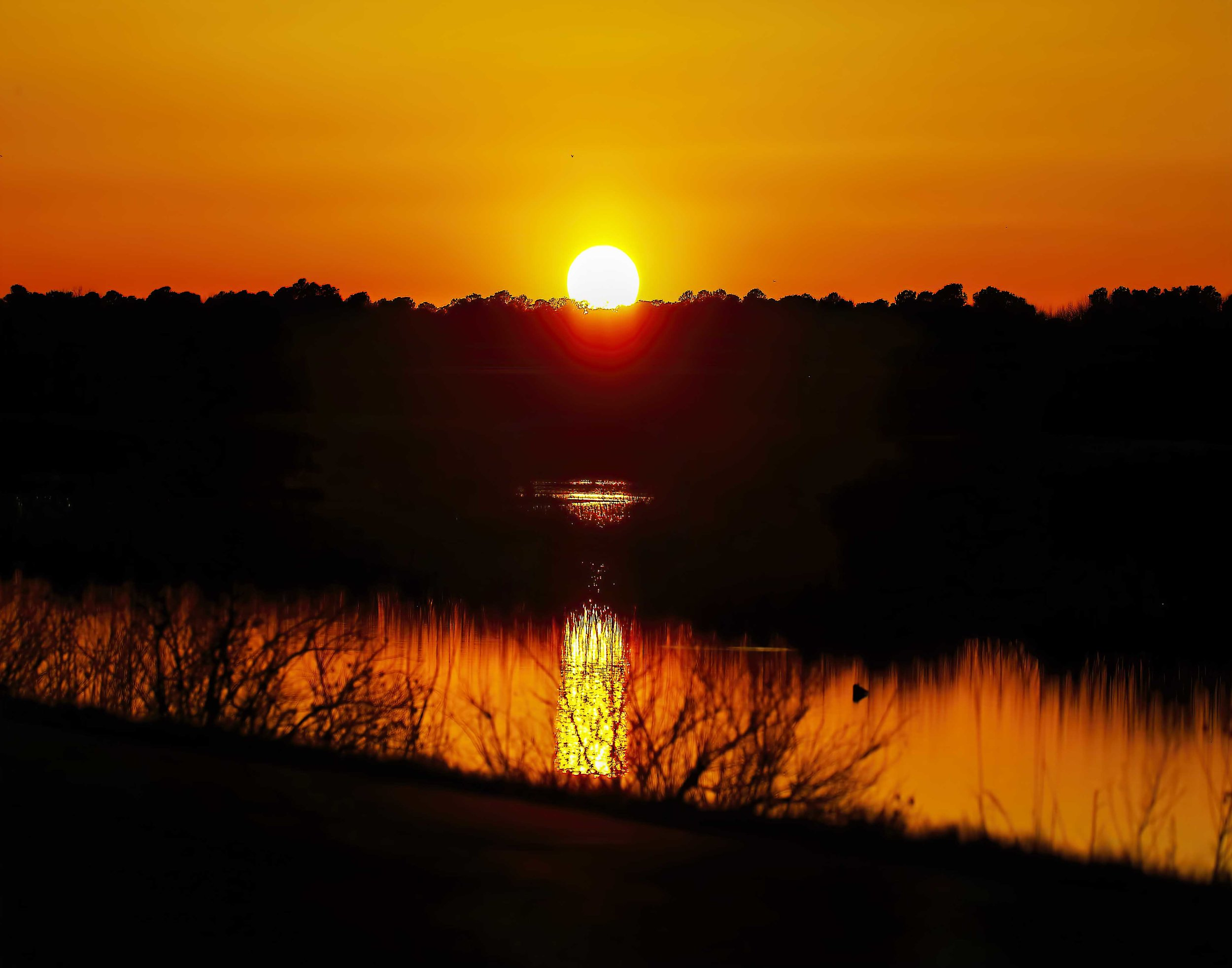 Sunset_Blackwater_NWR