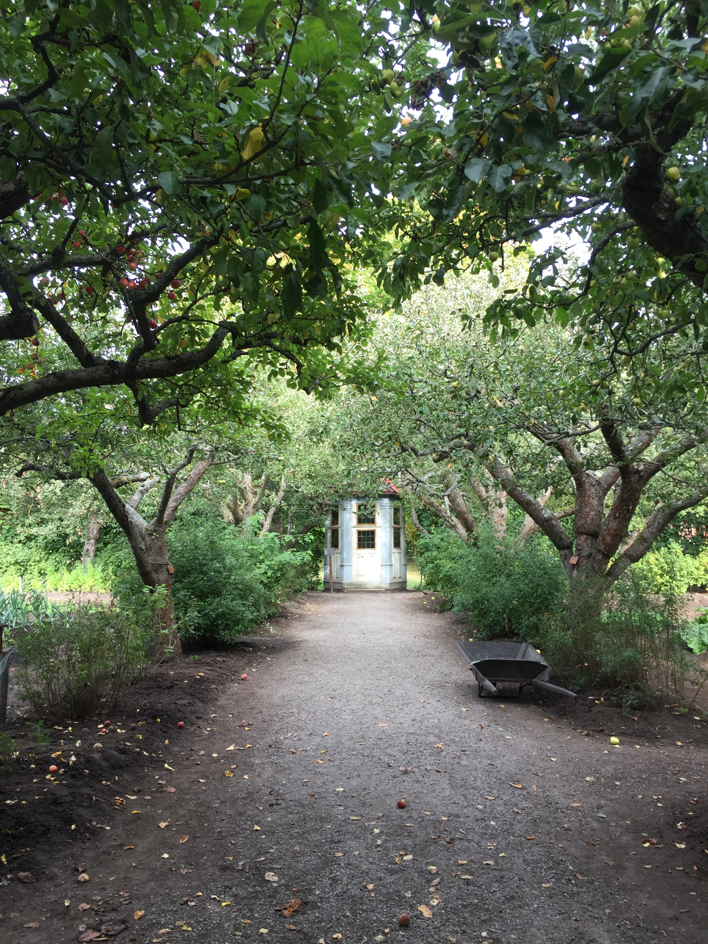 Precis som en idé kan uppenbara sig, kan ett lusthus dyka upp längst bort i en hemlig trädgård.