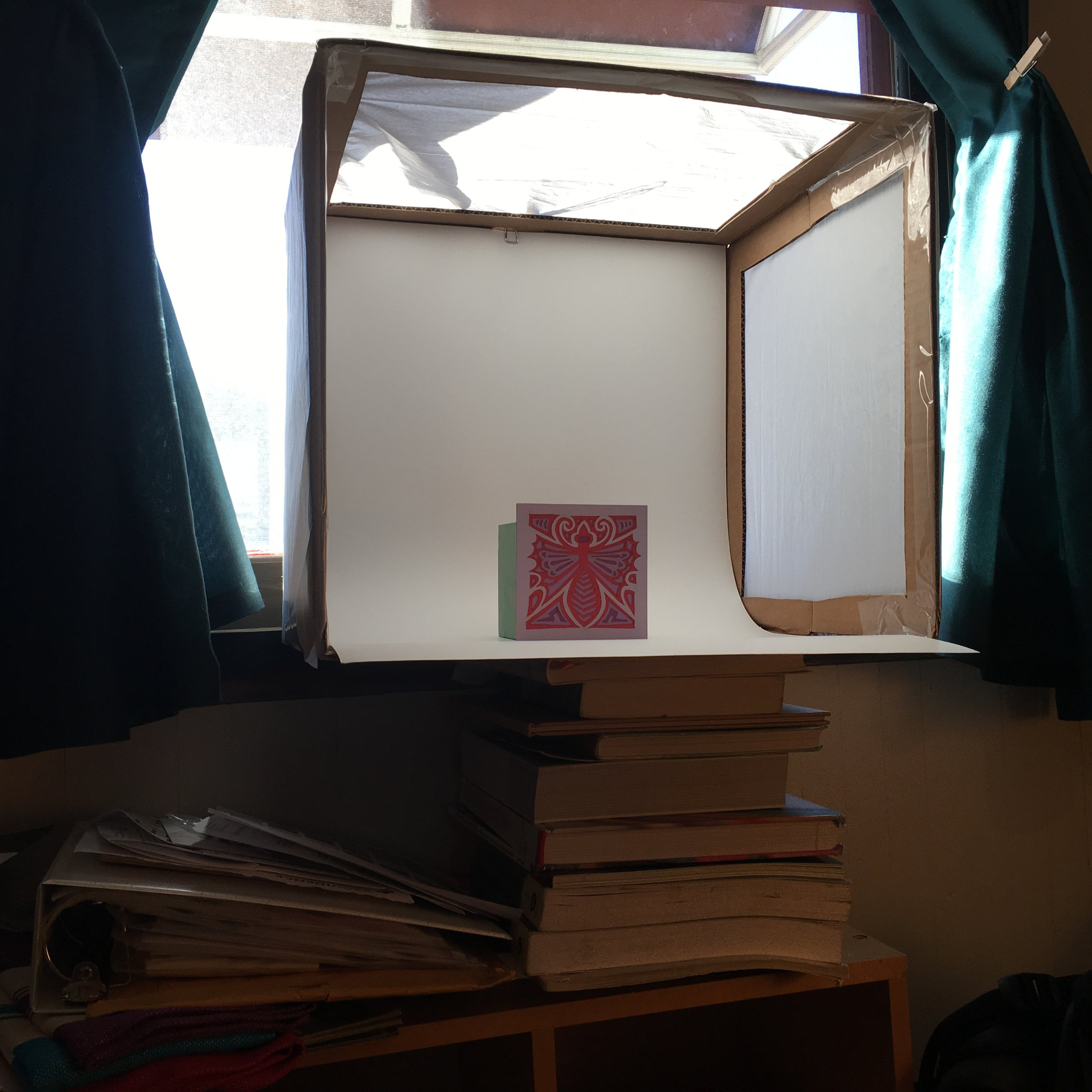 I used about 10 books to get it to just the right height for the tripod and to be situated in the window so I could use natural light. I am grateful that it was a sunny day in Portland! I am curious to experiment on cloudy days and with spotlights in the near future.
