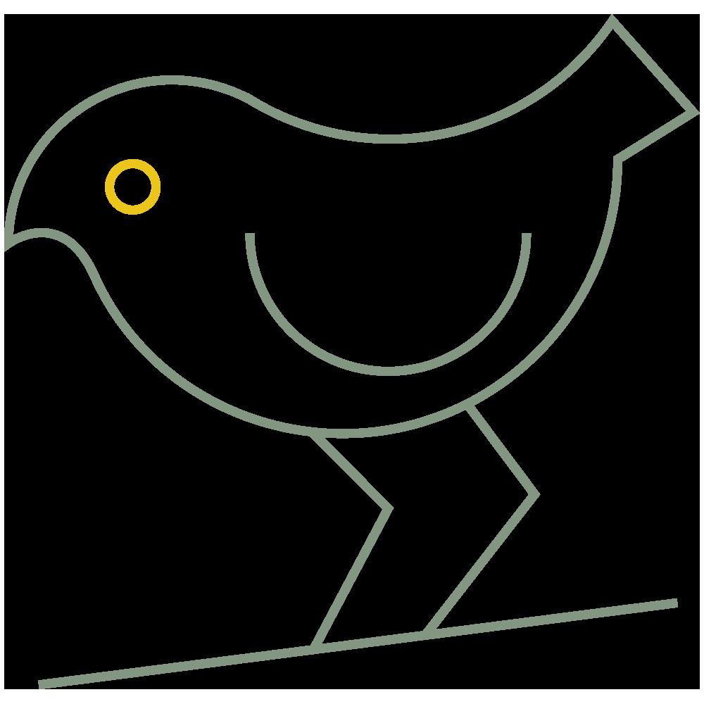 MAKU_BIRDWATCHING_ICON.png