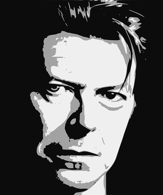 bowie-1152551_640.png