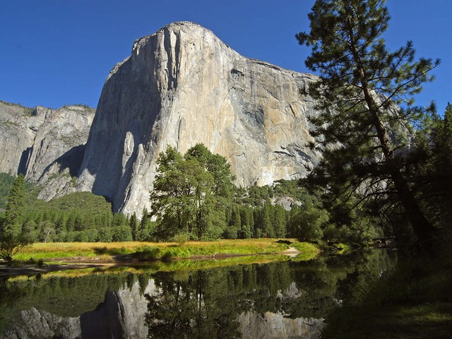 Image of El Capitan by  PDPhotos  from  Pixabay