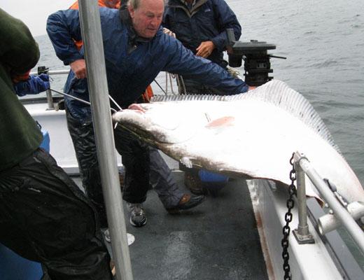 fishing9c.jpg