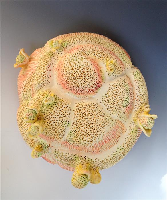 """Unseen Life on the Reef  (12"""" x 12"""") by Eileen Braun, ceramic artwork"""