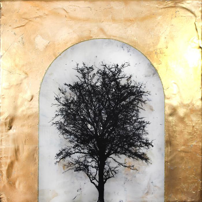 """The Golden Hour  (18"""" x 18"""")by Shannon Amidon, encaustic artwork from the series  Dendrolatry"""