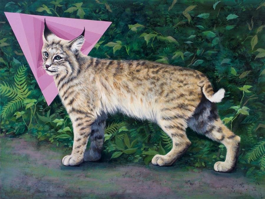 "Lynx Rufus  (30"" x 40"") by Jennifer Wildermuth Reyes, oil painting"