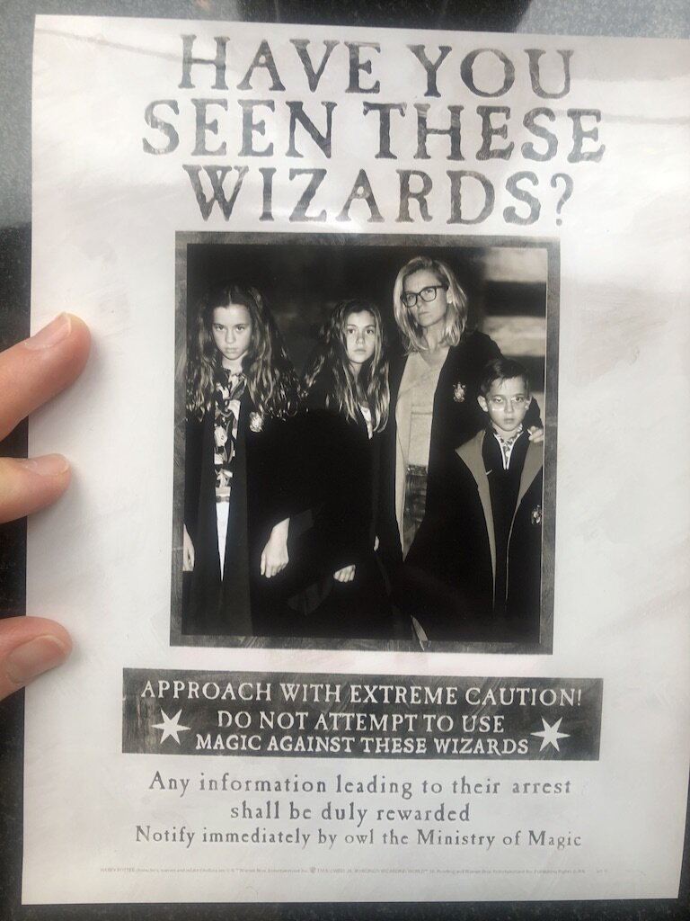 HaveYouSeenTheseWizards copy.jpeg
