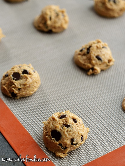 Nut Free Chocolate Chip Cookies Recipe