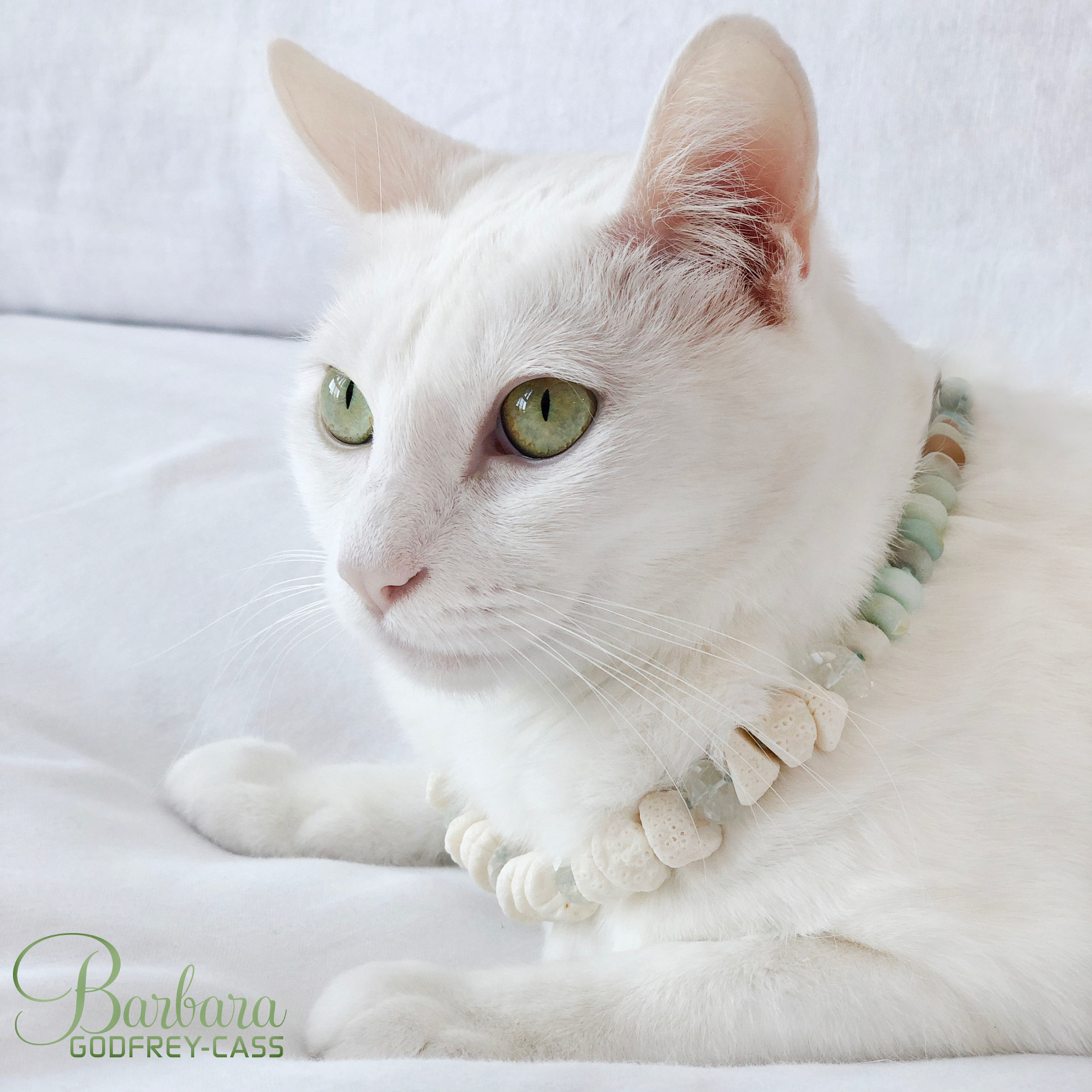 Princess Vespa _Pet Joaillerie.jpg