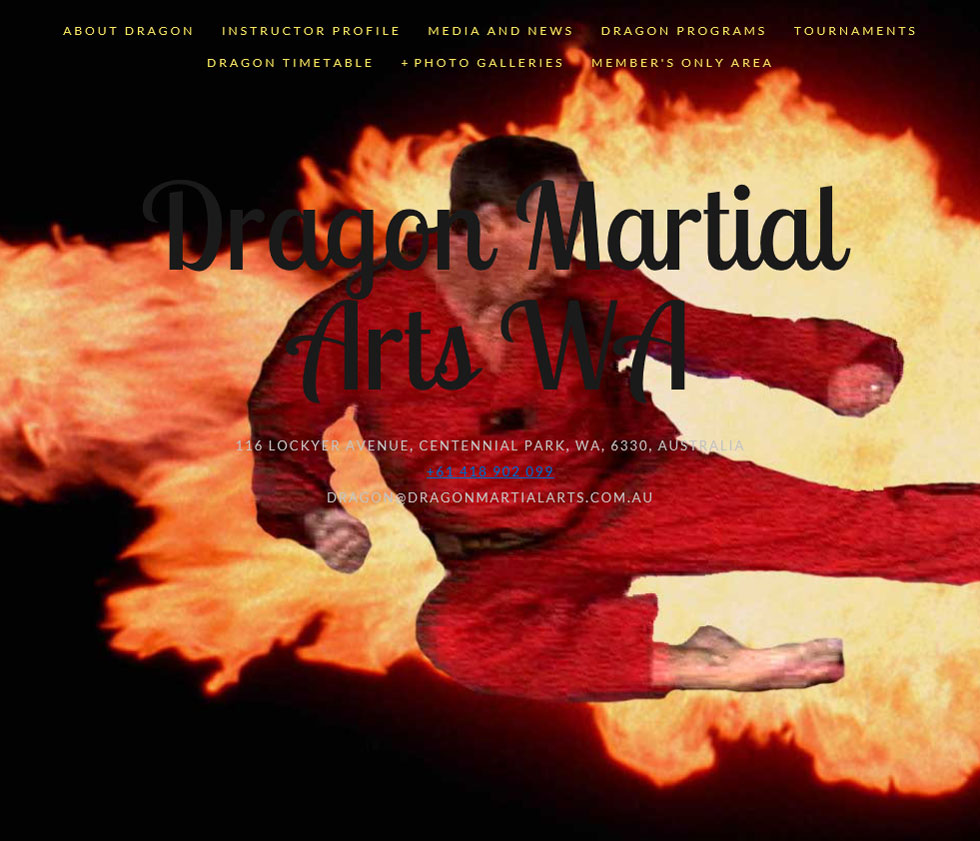 dragonmartialarts-com-au-980w.jpg