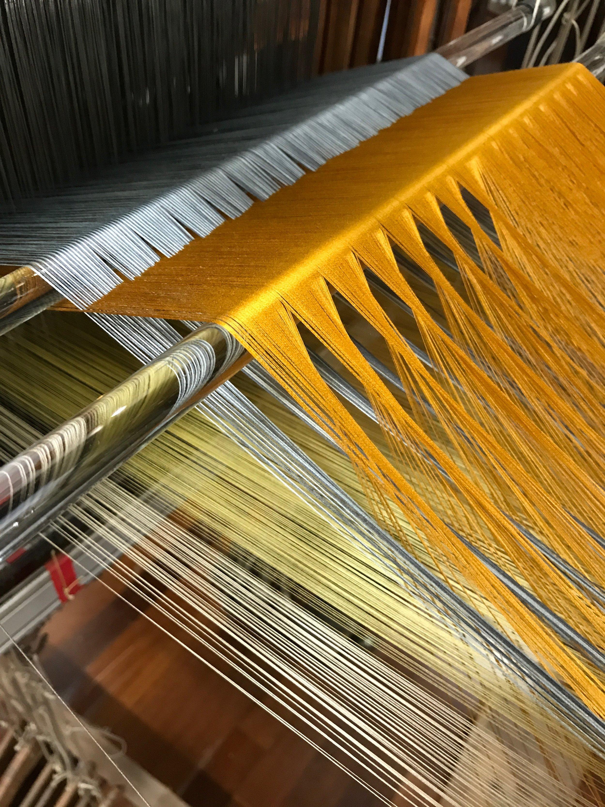 Warp setup for velvet weaving