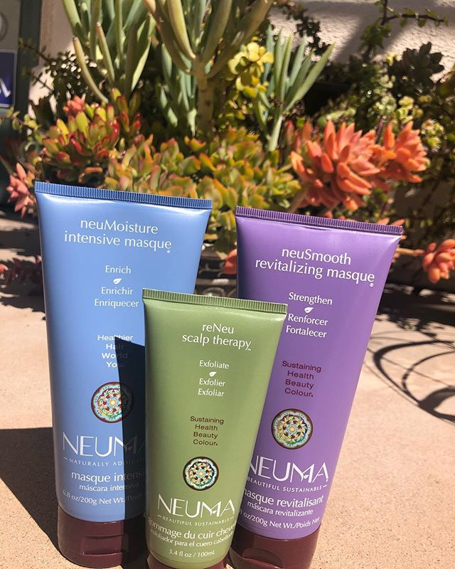 Is your hair in need of some EXTRA TLC?? You NEED to try these masks then! Scalp Therapy 💚 - For people who need that extra cleanse for those dirty, flaky scalps. You literally feel your scalp exfoliating with this product and it actually is amazing 😍 Revitalizing Masque 💜 - Has your hair been a little over processed and starting to feel weak and damaged? This mask is great and will add strength, smoothness, and shine to help you look good as new! Intensive Masque 💙 - This is a ultra rich hydrating treatment that transforms hair by restoring moisture to improve texture! Leaves hair feeling smoother, softer, and full of shine!!! // 💚💜💙