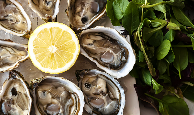 Oysters770x458.png