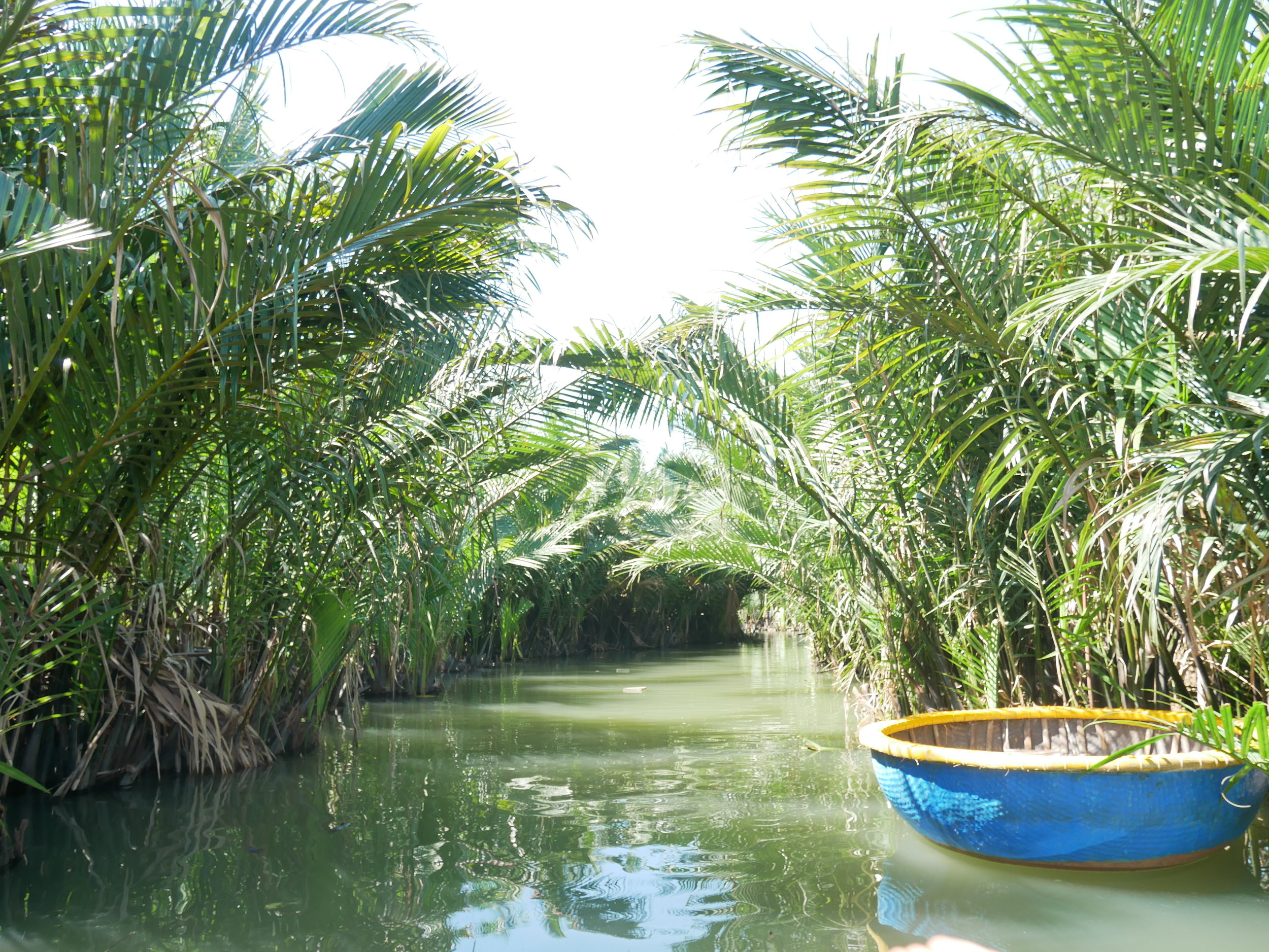Coconut Basket boat on Thu Bon river. Fun experiences of Hoi An