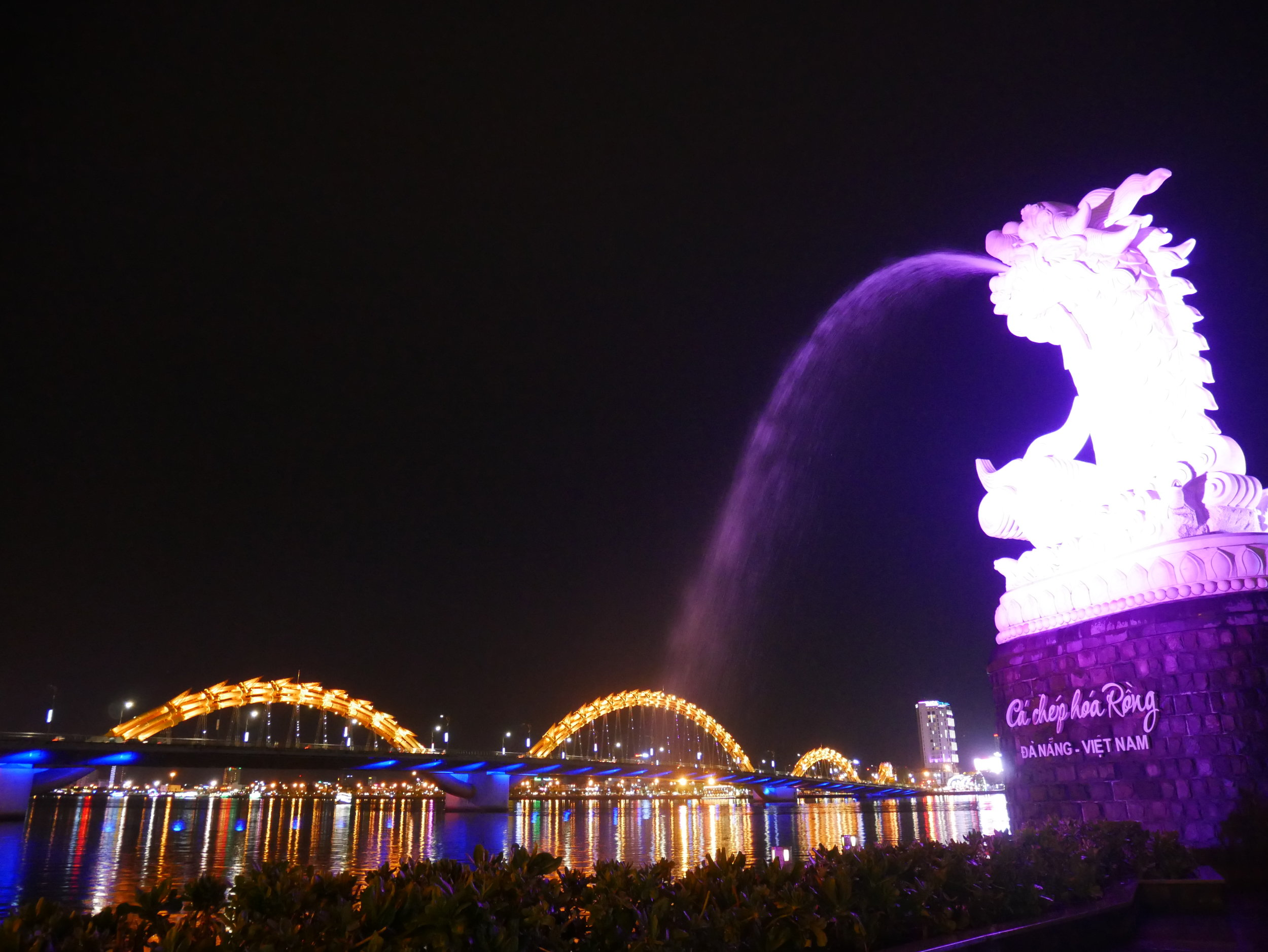 The Dragon Bridge and the Dragon Carp are lit up at night in Da Nang, Vietnam.